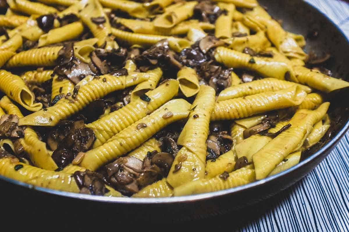 Garganelli Pasta with Mushroom Sauce